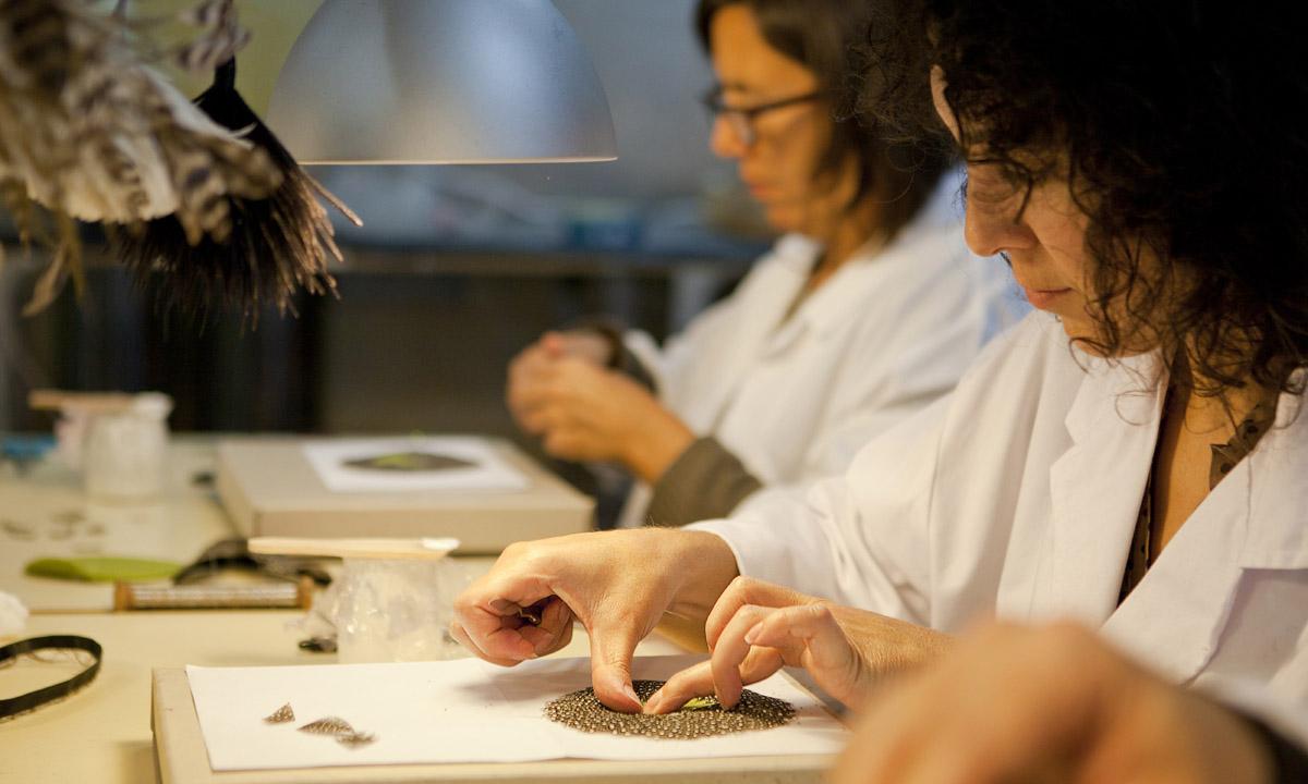 eduardo armada - fotografía y diseño web - fotografías taller de plumería artesanía de galicia