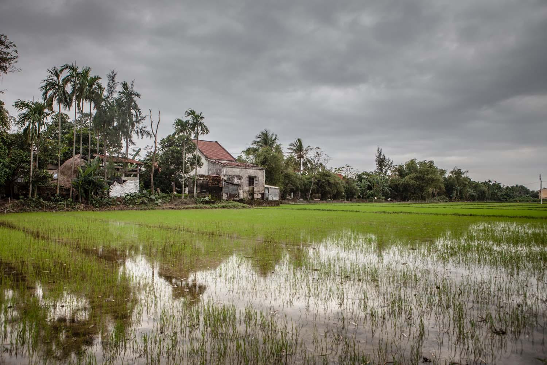 Eduardo Armada-Fototografía-Vietnam-1